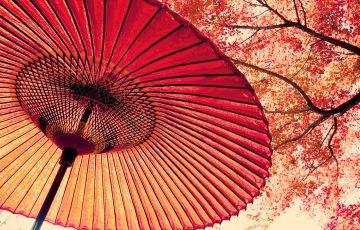 Japan - Land der aufgehende Sonne